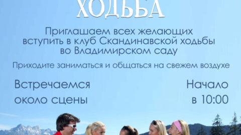Скандинавская ходьба в парке «Владимирский сад»